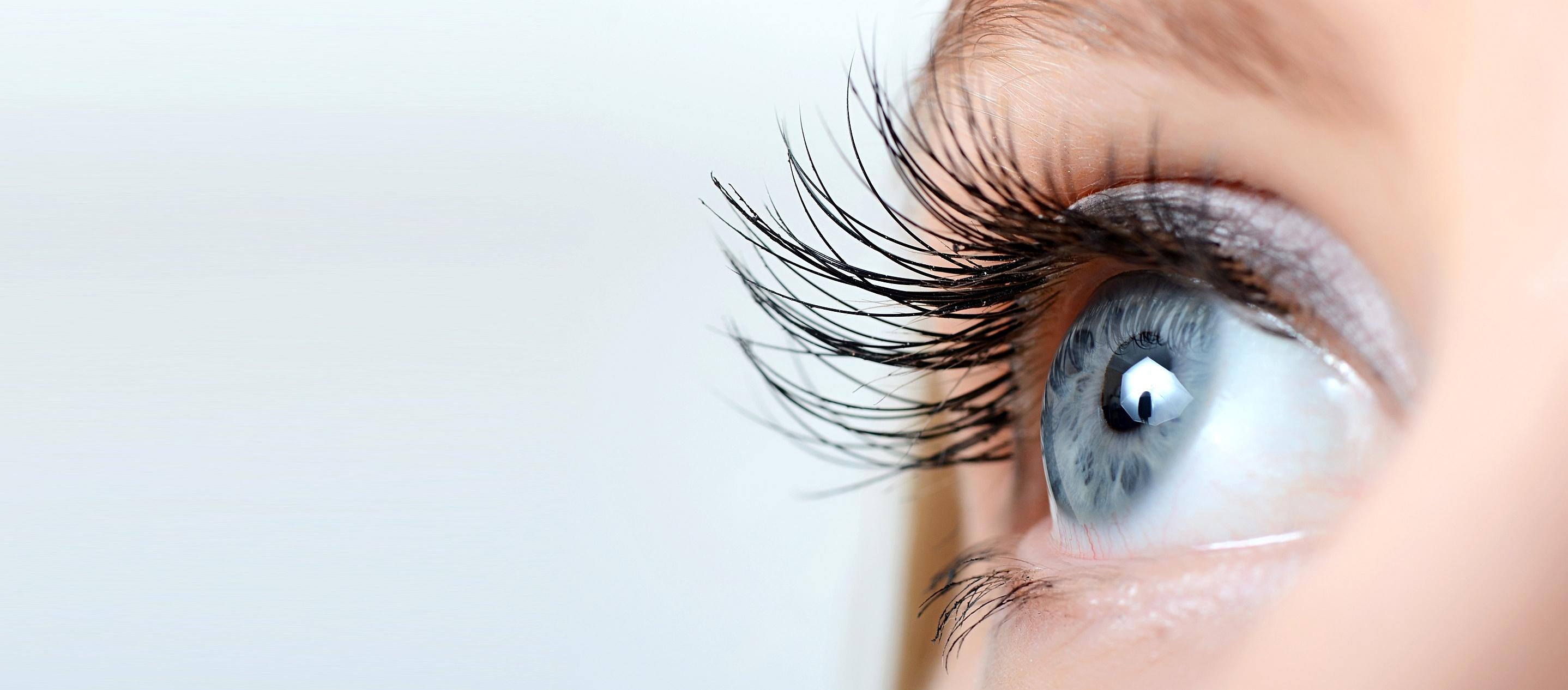 Augenarzt Kassel - Darstellung Auge